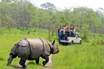 CHITWAN JUNGLE SAFARI- 3 DAYS