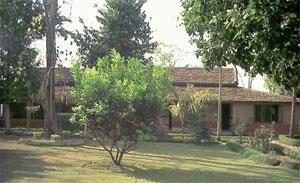 Hotel Safari Narayani