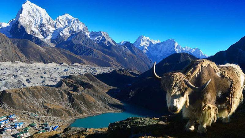 Gokyo Renjo la Pass Trekking - 16 Days